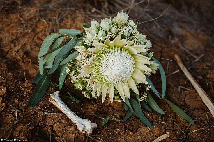 Most of the native flowers used in the wedding were sourced and picked from neighbour's ba...