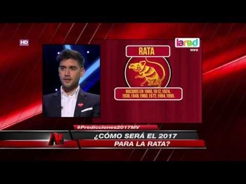"""Así será el 2017 para la """"rata"""" según el horóscopo chino - Tarot del Amor"""
