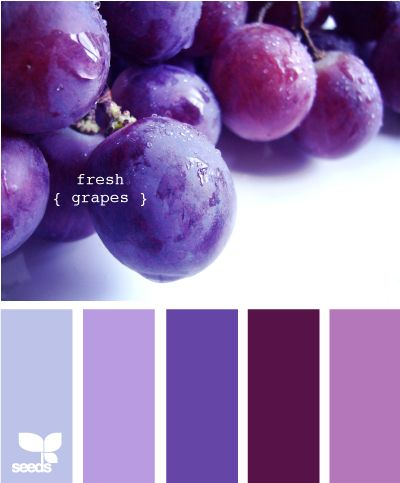 Fresh Grapes. I love purple, but I'm trying to decide if I really like this scheme...