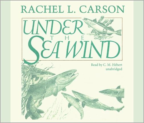 rachel carson raises earth awareness in her book silent spring The environmental policy of the united states is a federal  rachel carson's controversial 1962 book silent spring,  raises public awareness.
