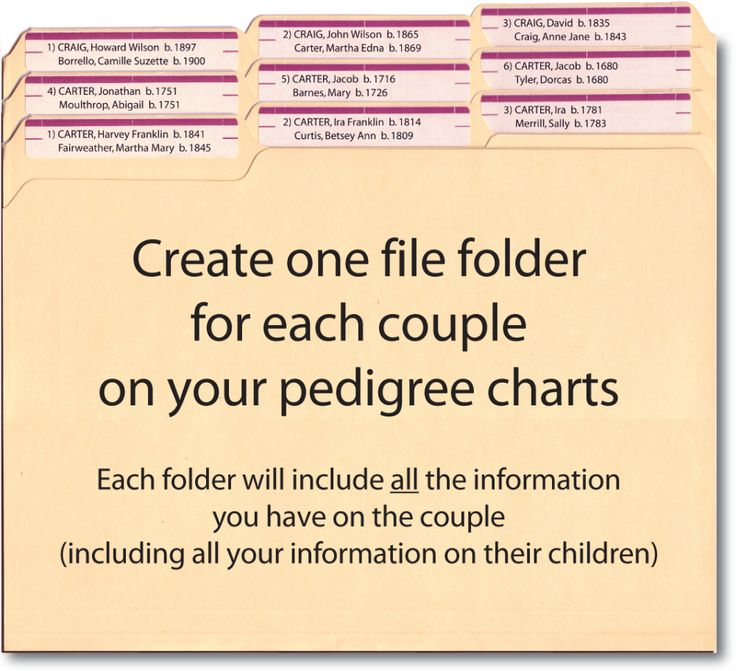 Create one file folder for each couple in your pedigree chart