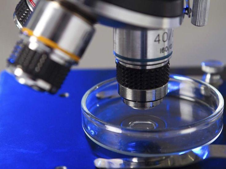 Afirman que nanotecnología revolucionará avances médicos #tecnologiamedica   El investigador mexicano, Miguel José Yacamán, director del Departamento de Física y Astronomía de la Universidad de Texas, San Antonio, afirmó que la nanotecnología, considerada como la nueva revolución industrial, es un factor determinante en los avances de la medicina.
