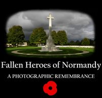 Home Page for the open beta release of the new Fallen Heroes of Normandy database, archive and website at www.fallenheroesofnormandy.org