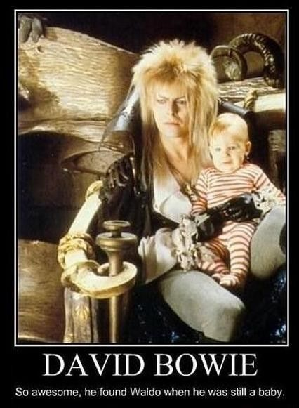 Bwahahahahaha!  Bowie is the Awesomest: Like A Boss, Fun Recipe, Stuff, Childhood Memories, Movies, Funnies, David Bowie, Davidbowi, Labyrinths