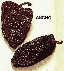 Enchiladas, chiles anchos, México