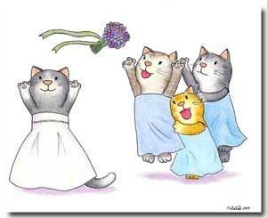 Planning Your Dream Cat Wedding
