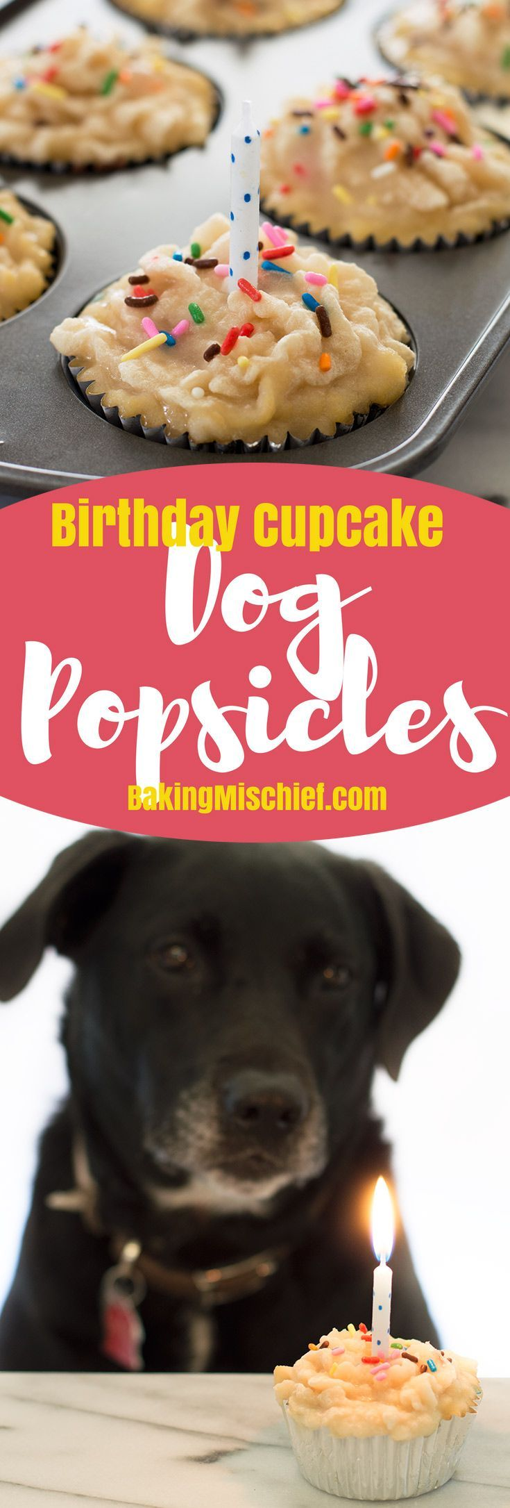 Cupcake-shaped dog popsicles made with chicken broth and a pureed tuna frosting. Simple to make and your dog is going to LOVE them! From http://BakingMischief.com