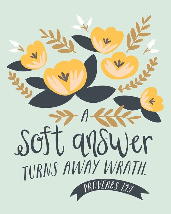 """""""A soft answer turns away wrath."""" Proverbs 15:1"""