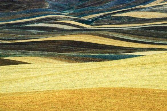 Franco Fontana. Paesaggio a confronto