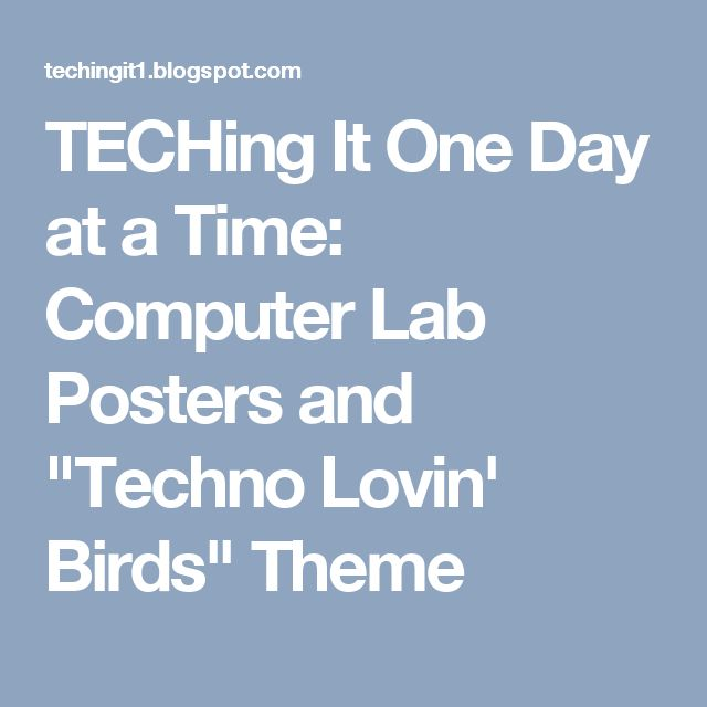 """TECHing It One Day at a Time: Computer Lab Posters and """"Techno Lovin' Birds"""" Theme"""