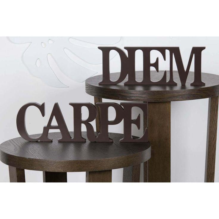Schriftzug CARPE DIEM Holz in Braun