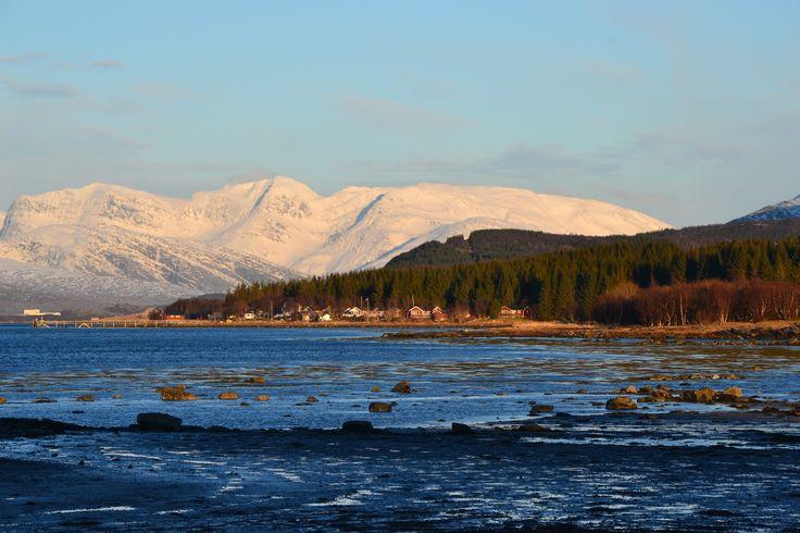 Fjord - Norwegian landscape.