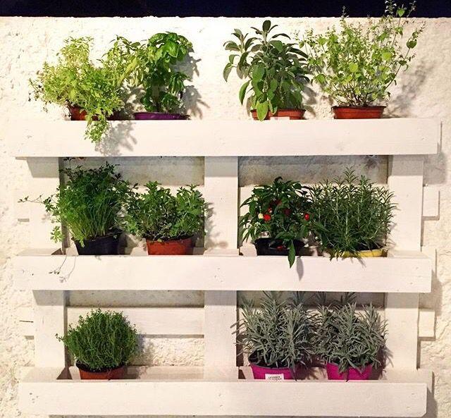Pallet, orto verticale, fai da te, riciclo creativo, erbe aromatiche, giardino, shabby chic