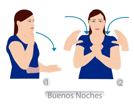 """48 """"BUENAS NOCHES"""" LENGUA DE SEñAS COLOMBIANA (LSC)"""
