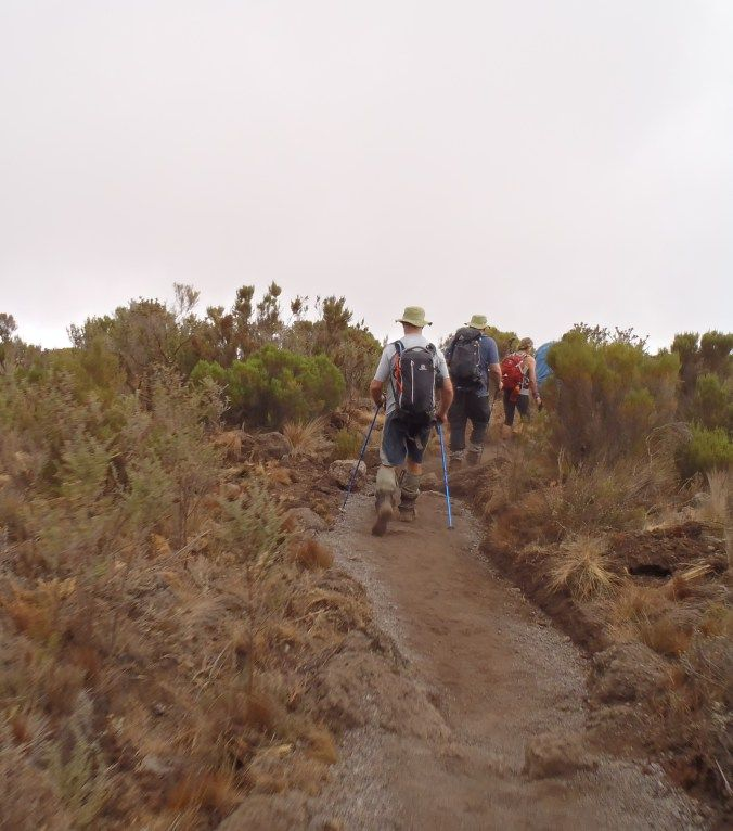 Looking back in Day 1 Rongai Route, Mount Kilimanjaro from Blogger Brande at Running For The Gate