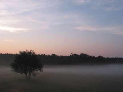 Hajnali köd az Őrségben.