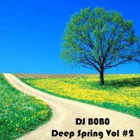 DJ B0B0 - Deep Spring Vol 2 (Promo Mix 2015) by Dj.B0B0 on SoundCloud