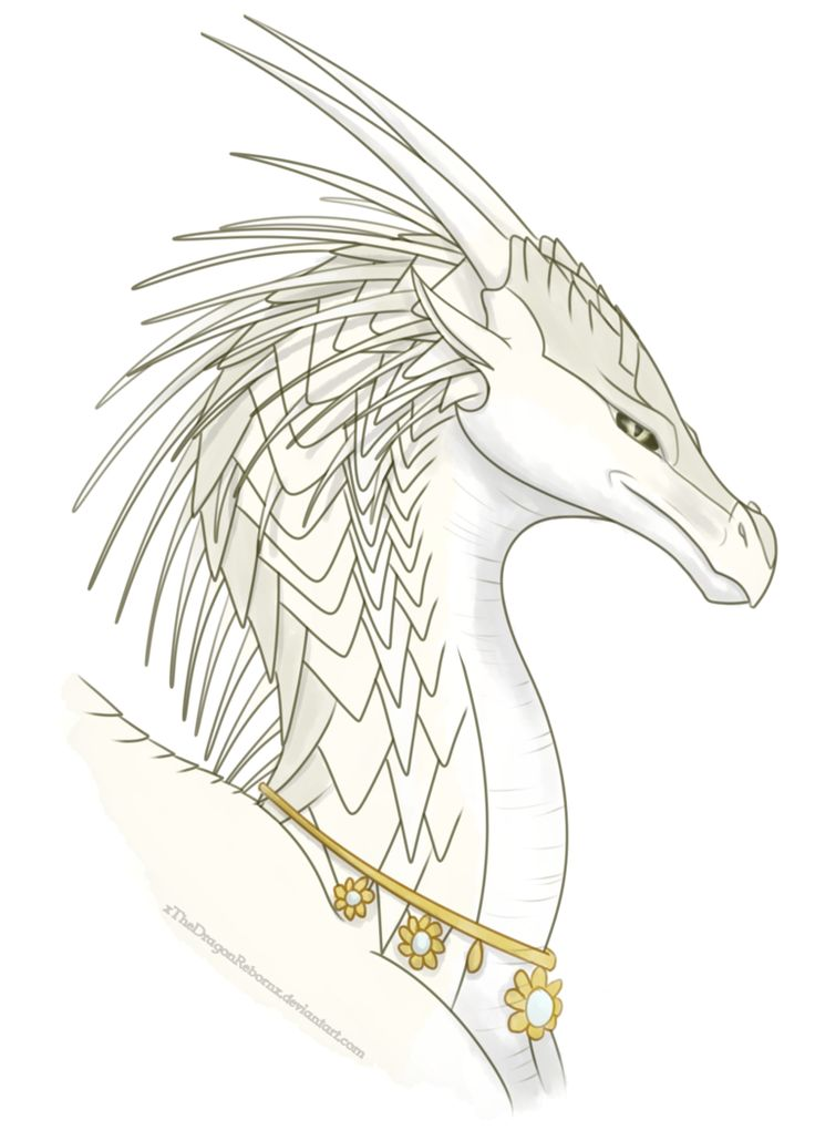 144 best wings images on Pinterest   Wings of fire ...
