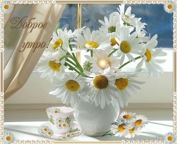 Чашка и блюдце, цветы на подоконнике - Доброе утро анимационная картинка, открытка gif, картинка