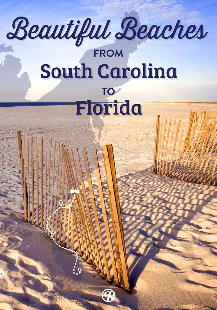 Have a beach themed road trip and stop along these beautiful beaches one the east coast!