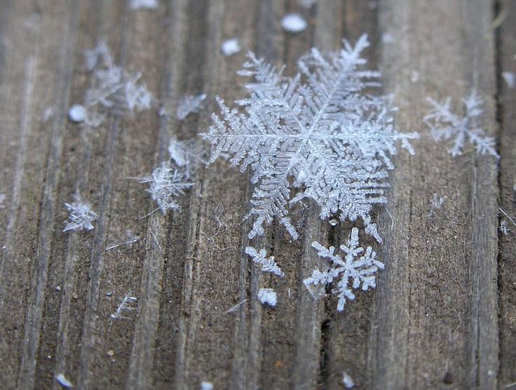 I LOVE snow flakes :) They make me happy!