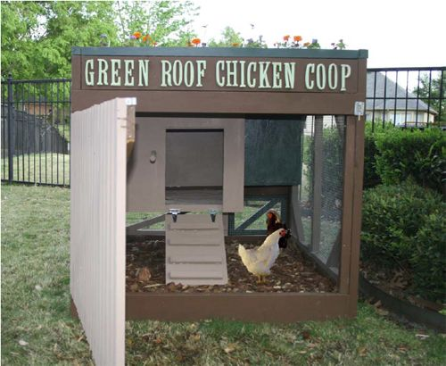105 best images about coop building plans on pinterest for Plans for a chicken coop for 12 chickens