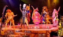 Festival of the Lion King Live Stage Show at Animal Kingdom
