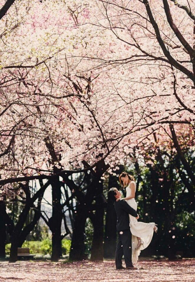 カメラマンについて |Sakiko'sTRUNK Weddingnote☆ステキな大人おしゃれWeddingを目指して★2016.3