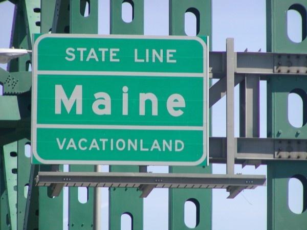 910 Best Maine Moose Lobster Images On Pinterest