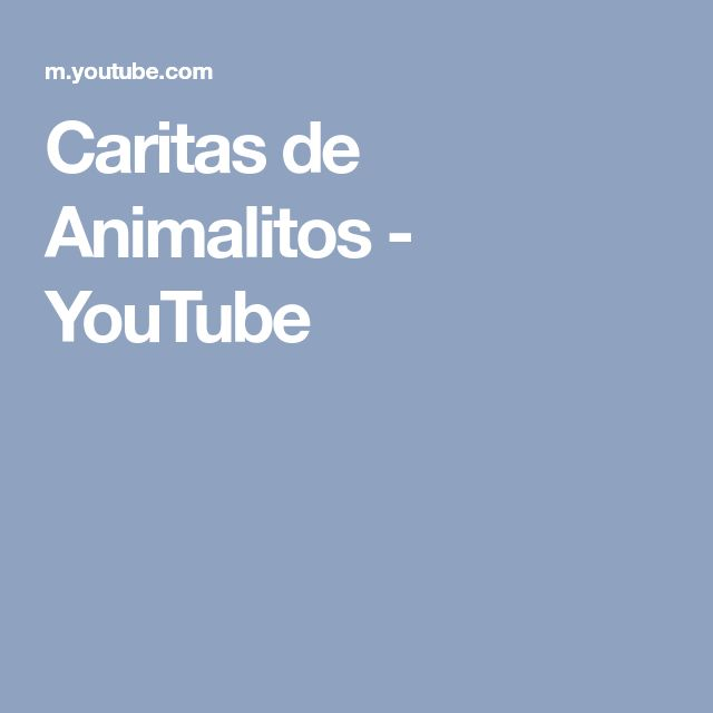Caritas de Animalitos - YouTube