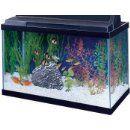 Amazon.com : All Glass Aquarium AAG10015 Tank Black, 15-Gallon : Fish : Pet Supplies