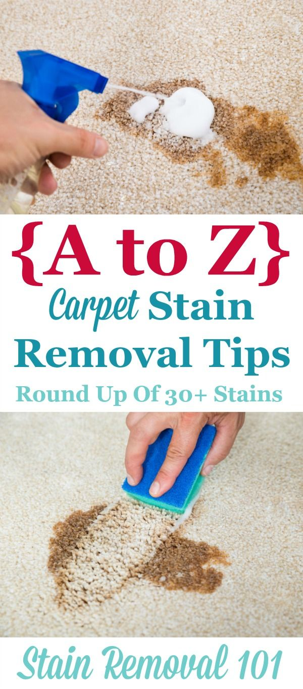 Roundup of over 30 articles all about carpet stain removal based on the type of stain, so no matter what spilled on your carpeting you can remove it {on Stain Removal 101}