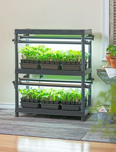 Step Up to a 3-Tier Grow Light System for the Healthiest Seedlings and Happiest Houseplants