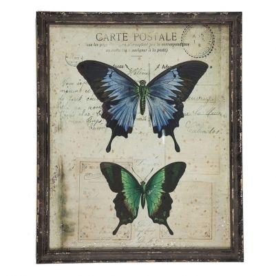 Framed Butterfly 'Postcard' 1