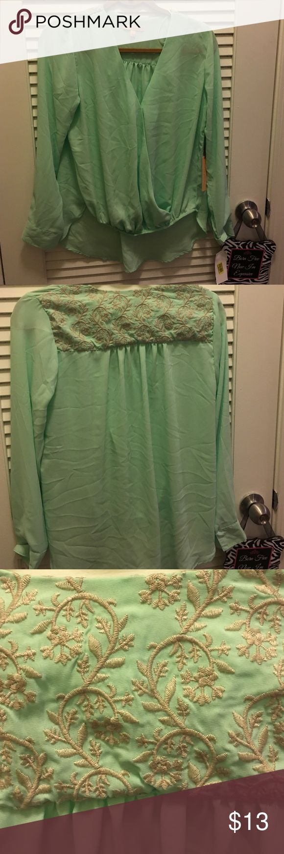 Mint green plunge blouse with lace detail Mint green plunge blouse with lace detail Gibson + Latimer Tops Blouses