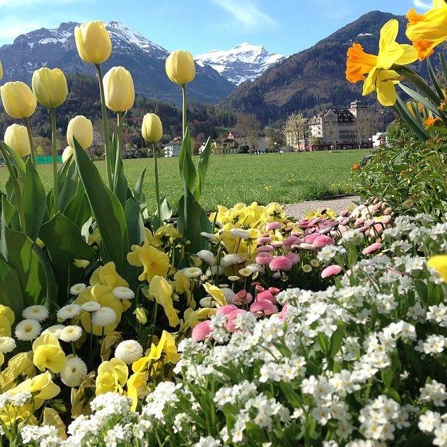 Springtime in Interlaken, Switzerland