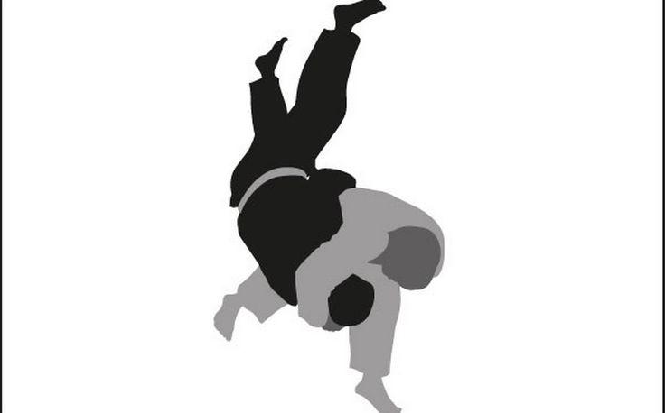 fotografia judo - Cerca con Google