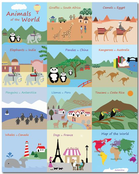 Learn about animals of the world with Baby Ventures canvas art! From Costa Rica to Egypt, animals of the world come to life in their natural habitats! Take in their diversity and find inspiration for visiting new locales with your little ones. #childrensart #kidsart #animals #nurserydecor #kidswallart