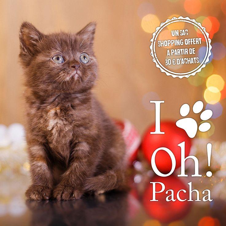 Envie d'un cadeau ? Oh ! Pacha vous offre un sac shopping à partir de 30 € d'achats. Boutique en ligne : http://www.ohpacha.com/