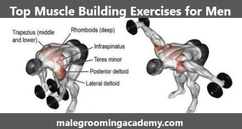 Top Muscle Building Exercises #Fitness #Health #Life #Love #diet