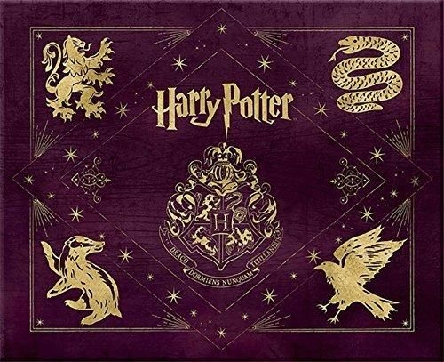 Harry Potter: Hogwarts Deluxe Stationery Set (Insights Deluxe Stationery Sets)