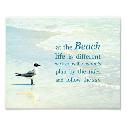 At the Beach life is different....