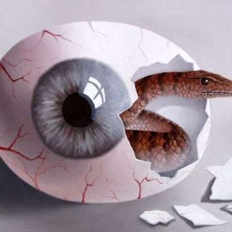 """One #pain is lessened by another's #anguish. ... Take thou some new infection to thy eye, And the rank #poison of the old will die."" ― William Shakespeare ❇  Mihai Criste  #optical #illusion #painting #surreal #surrealart #surrealism #art #creativity #instaart #eye #yeux #ojos #occhio #snake #egg"