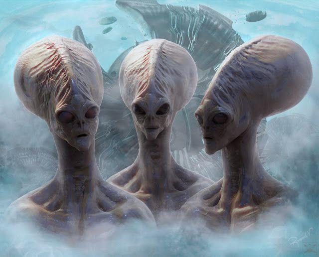 5 Espécies extraterrestres exóticas que estão em contato com a Terra agora mesmo ~ Sempre Questione - Últimas noticias, Ufologia, Nova Ordem Mundial, Ciência, Religião e mais.