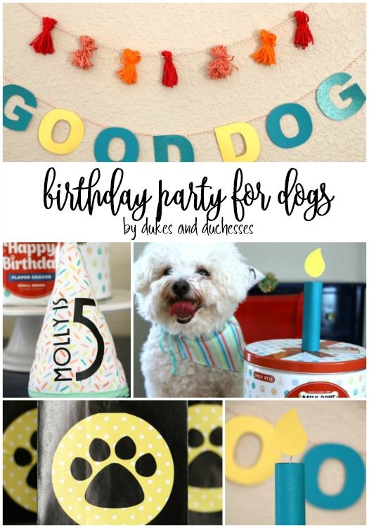 Ad Birthday Party For Dogs With Craft Ideas And Milkbone Treats From Target Partyideas Dog Pet Puppyparty