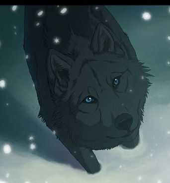 blue from wolfs rain