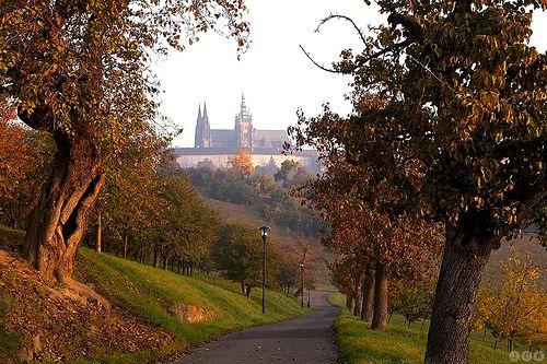 View from Petrin hill/park towards Prague Castle