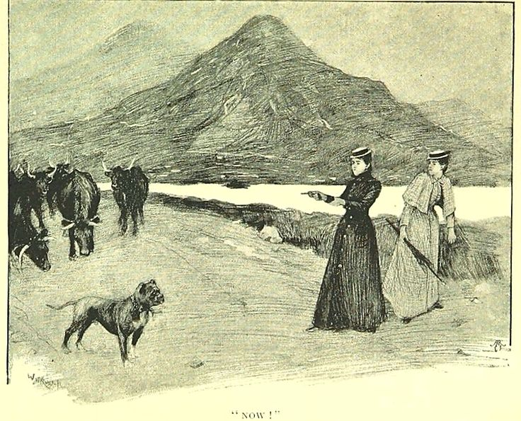 """From page 65 of 'Through Connemara in a Governess Cart. By the authors of """"An Irish Cousin"""" [i.e. Edith Œ. Somerville and """"Martin Ross,"""" i.e. Violet Martin]. Illustrated by W. W. Russell, from sketches by Edith Œ. Somerville. Pinned by Judi Crowe."""