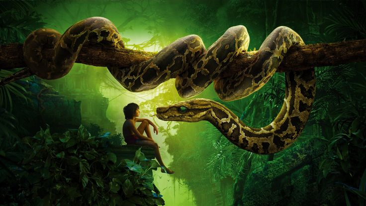 The Jungle Book (2016) English Film Free Watch Online The Jungle Book (2016) English Film The Jungle Book (2016) English Full Movie Watch Online The Jungle Book (2016) Watch Online The Jungle Book (2016) English Full Movie Watch Online The Jungle Book (2016) Watch Online, Watch Online Watch Moana The Jungle Book (2016) English Full Movie Download The Jungle Book (2016) English Full Movie Free Download
