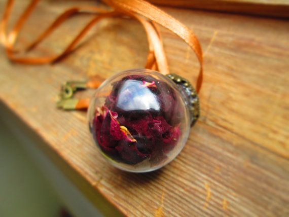 Rose necklace real flower necklace terrarium by LisaDecorGifts
